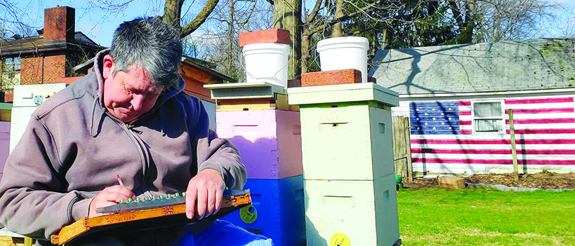 Wagner gets grounded with bees