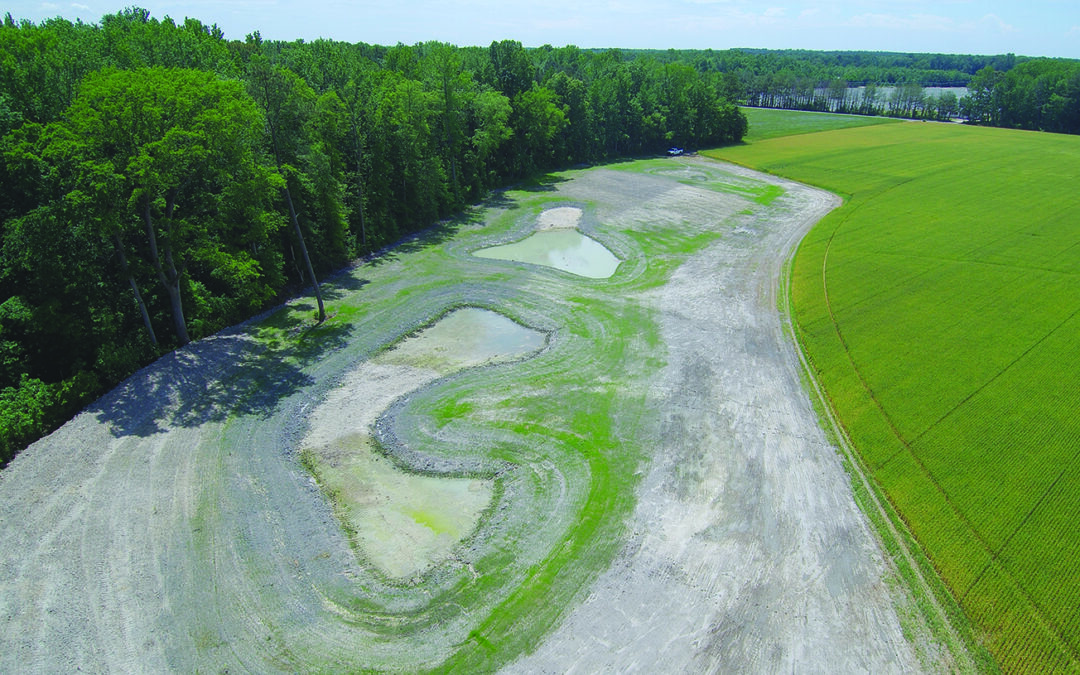 Hastings' pond project holds water