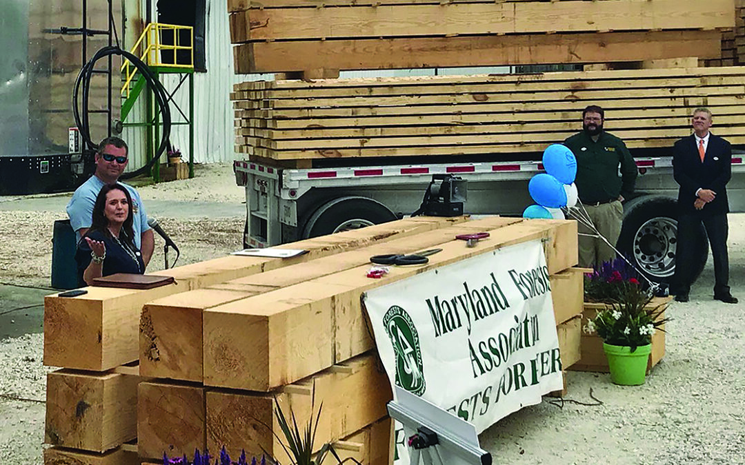 Delmarva Lumber defies odds to boost region's forest products industry
