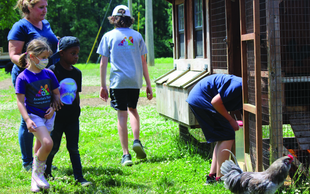 Young students invited to get their hands dirty at Acacia's Farm School